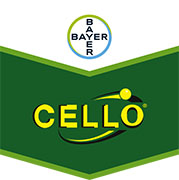 Brandtag Cello