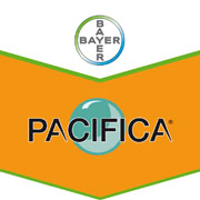 Brandtag Bayer CropScience Pacifica